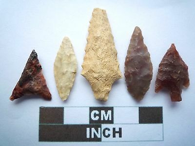 Neolithic Arrowheads x5, High Quality Selection of Styles - 4000BC - (X018)