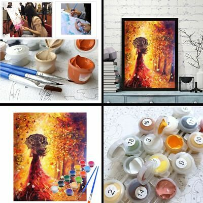 40*50cm DIY Beautiful Women Oil Painting Home Decor Paint by Numbers Kits Craft