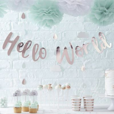 Hello World Baby Shower Gender Reveal Mum to Be Party Decor Mint Rose Gold
