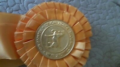 DEVON horse show ribbon 1968