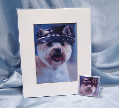 Cairn Terrier Leather Biker Hat Gift Set 10 x 8 Matted Picture - Magnet