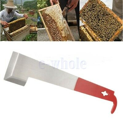 Outil apiculture J Forme Curved Tail Bee Hive Hook Rasoir acier inoxydable HZ