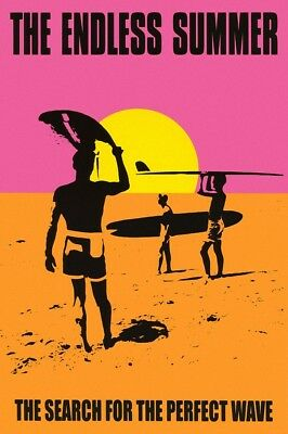 """the Endless Summer Movie art Wall Poster 24""""x36"""" surfing adventure picture"""
