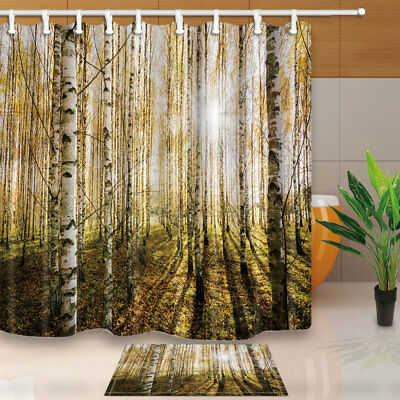 Sun Penetrates Birch Forest At Sunrise Bathroom Shower Curtain Fabric 71 Inches