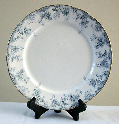 """Clevedon Royal Semi Porcelain England 9"""" plate with gold trim"""