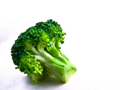 100G SEEDS NT of BROCCOLI CALABRESE/ Seeds SPROUTING / rich in antioxidants