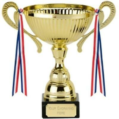 Trophy Cup Award 3 sizes available engraved free Prospect Handles /& Ribbons