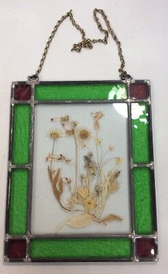 "Vintage Pressed Flower In Stained Glass 11"" X 9"" Home Window Decor Green Purple"