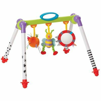 Taf Toys Take-To-Play Baby Gym Toddler Infant Play Activity Mat Fun Game 11605