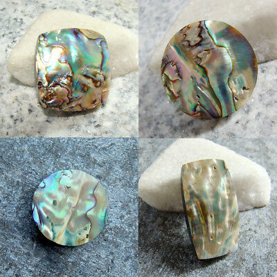 Natural Abalone Shell Cabochon Loose Gemstones