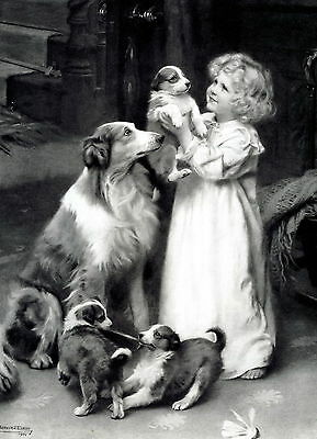 Print Victorian Girl Bedtime Goodnight to Rough Collie Mother Dog Puppies