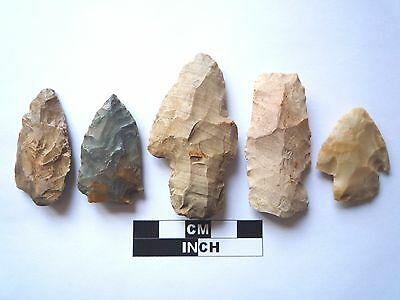 Native American Arrowheads x 5, Genuine Archaic Artifacts, 1000BC-8000BC (962)