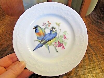 Limoges France Georges Boyer, Parrots, Bread And Butter Plate