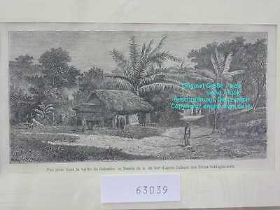 63039-Sri Lanka-Ceylon-Vallée de Colombo-TH-1870