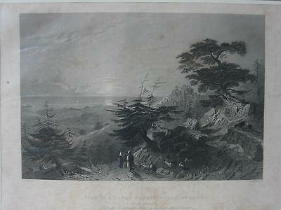 85060-Libanon-Lebanon-Liban-Cedar Forest-Barouk-Stahlstich-Steel engraving