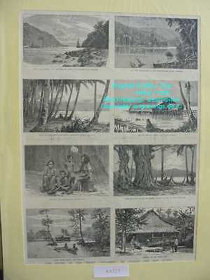 60321-Indonesien-Indonesia-New Guinea-Celebes-TH-1885