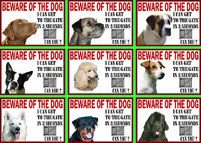 Beware Of The Dog Sign Gate in 3 Seconds Various Breeds set3
