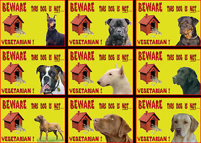 Beware Of The Dog Signs This Dog Is Not Vegetarian  Various Breeds set2