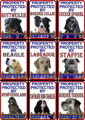 Beware Of The Dog Signs Property Protected Various Breeds set1