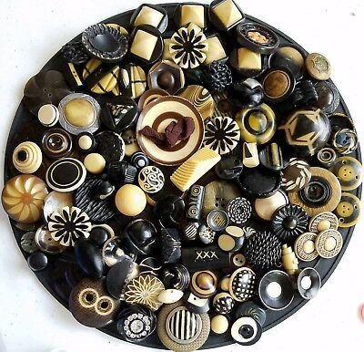 3H Big Lot 115 Vintage Black & Cream Pad Shank Celluloid Tight Top Horn Buttons