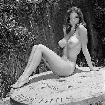 VINTAGE Busty Female Semi Nude PINUP ART PHOTO 4X6 PRINT