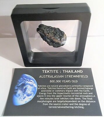 """RARE"" 15.7 Gram TEKTITE Museum Quality with stand and label"