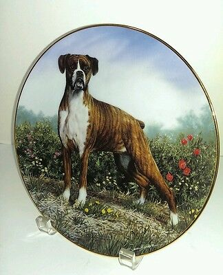 Boxer Dog Simon Mendez Standing Proud Limited Ed Collector Plate by Danbury Mint