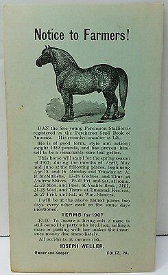 "Antique 1907 FOLTZ PA PERCHERON STALLION DAN HORSE Advertising ""Standing In""Card"