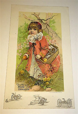 Rare Antique Victorian Farm Advertising Walter A Wood! Reapers NY Trade Card!