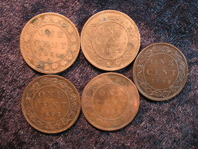 5 old world coin lot CANADA large 1 one cent penny 1876 1882 1893 1899 FREE S&H