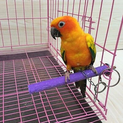 Bird Parrot Perch Stand Holder Color Emery Toys Grinding Claw Pet Cage Platform