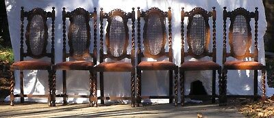 Antique Barley Twist & Caned English Oak Dining Chairs - set of 6