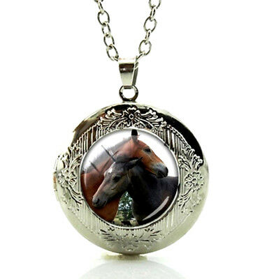 Two Horses Locket Pendant Necklace Horse Art Picture in a Gift Box Fast Shipping