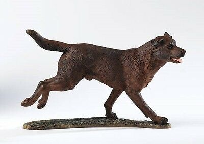 Border Fine Arts Action Dogs Collection Labrador Chocolate A20979 New & Boxed
