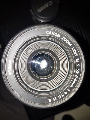 Canon EF-S 55-250mm F/4-5.6 STM IS Lens