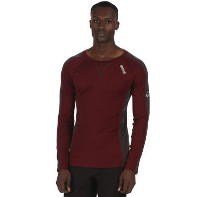 Regatta  Langarmshirt  Merino-Woll-Mix  Mens Beru  mulberry  L & 3XL - SALE