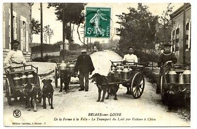 (S-38676) FRANCE - 45 - BRIARE CPA      LAURIAN ed.