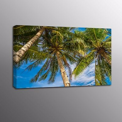 Large HD Canvas Print Coconut tree Blue Sky Canvas Wall Art Painting Home Decor