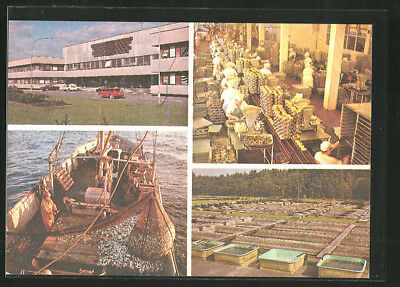 AK Estland, The Model Collective Fishery named after S.M. Kirov