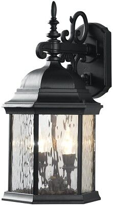 LED Decorative Water Glass Outdoor Lantern 9.5 in. 2-Light with Fixed Flame Tip