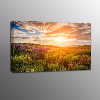 Landscape Modern Canvas Prints Wild Flowers Sunset Picture Wall Art Home Decor