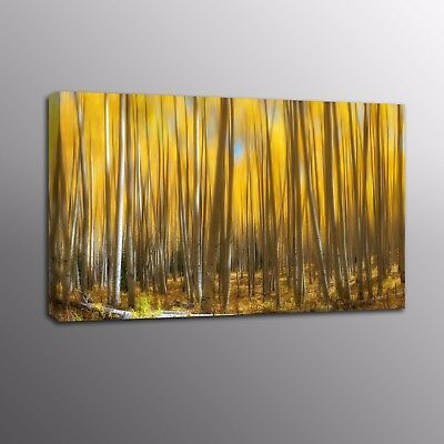 Landscape Modern Canvas Print Yellow Forest Wall Art Canvas Painting Home Decor