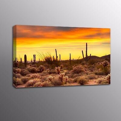 Giclee Canvas Prints Golden Desert Sunset Wall Art Home Decor Painting Picture