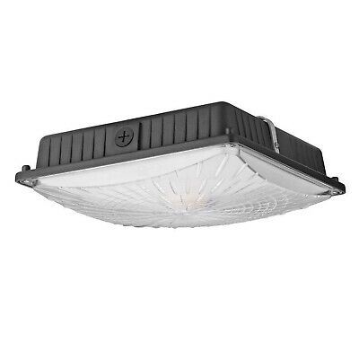 1000LED 65W LED Canopy Light 7,800Lm 5000K Gas Station Canopy Fixture AC110-277V