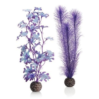 Oase biOrb Easy Plant 2 Pack Purple Kelp Medium 29cm Fish Tank Aquarium Decor