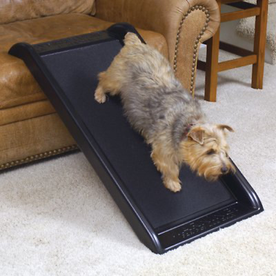 Pet Ramps For Small Dogs Bed Couch Travel Safety Elderly Pets Indoor Outdoor New