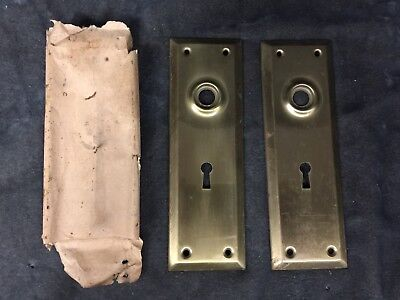 2 Matching Unused Vintage Antique Brass Door Knob Backplate Plate Covers