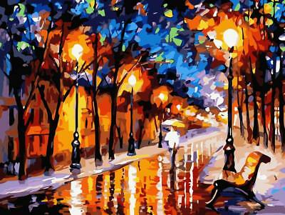 NIGHT LIGHT PAINTING PAINT BY NUMBERS CANVAS KIT 20 x 16 ins FRAMELESS, ACRYLIC