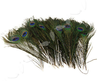 10-12inch Bouquet DIY Decoration Artisan Peacock Feathers Tail 50pcs