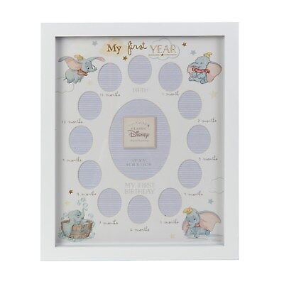 Disney Dumbo My First Year Photo Frame WBDI418